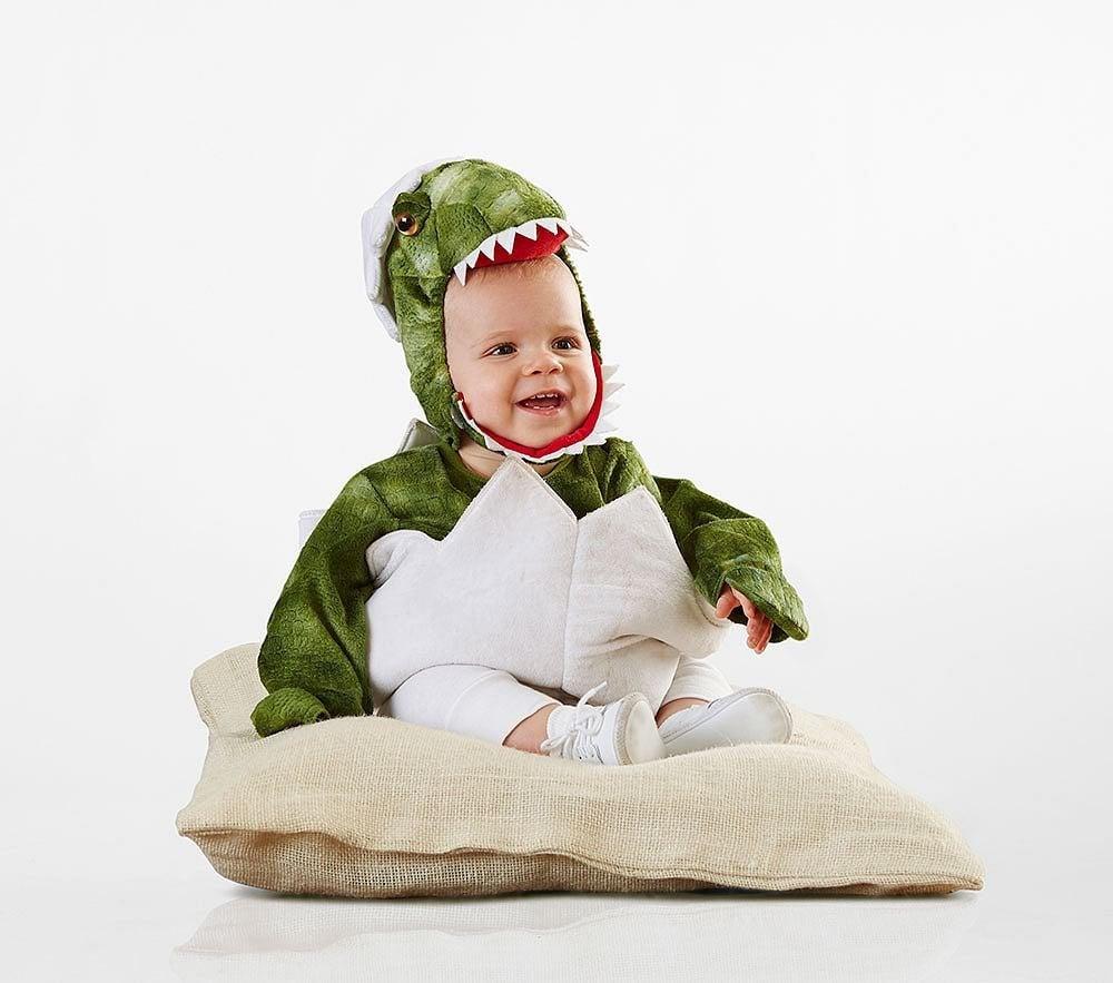 Baby Green Dinosaur Egg Halloween Costum