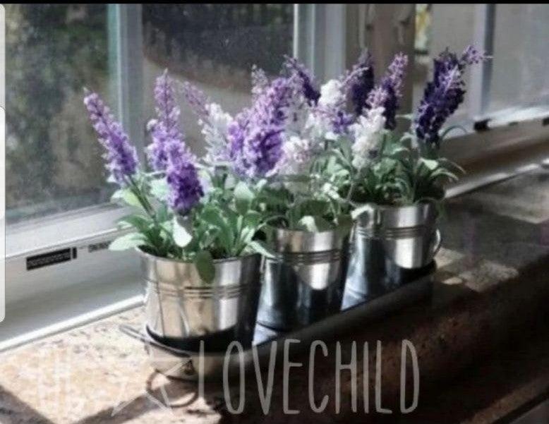 7pc Farmhouse lavender Galvanzied plante