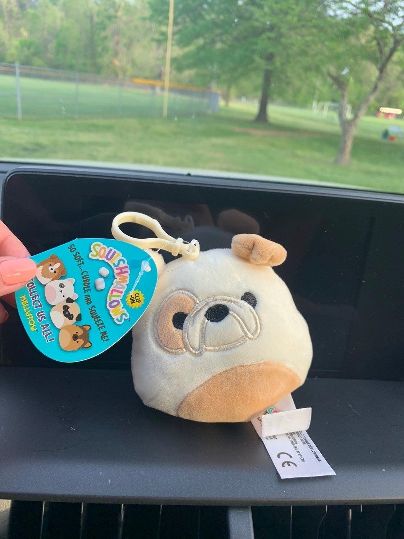 Brock the Bulldog Squishmallow clip