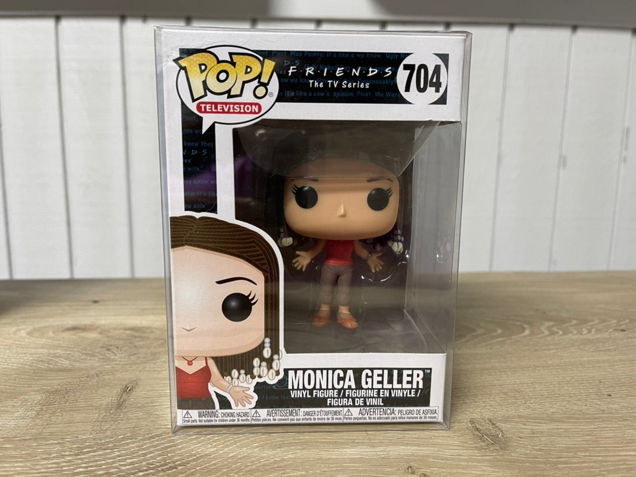 Monica Geller #704