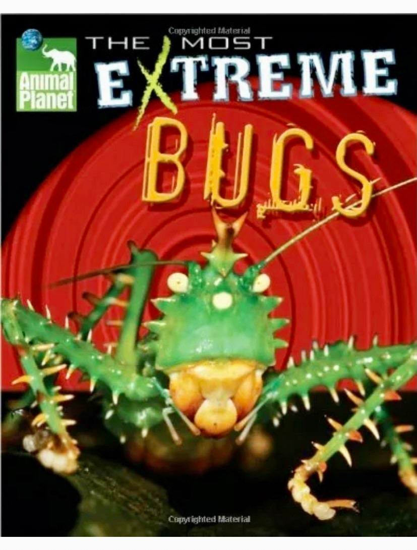 ANIMAL PLANET MOST EXTREME BUGS