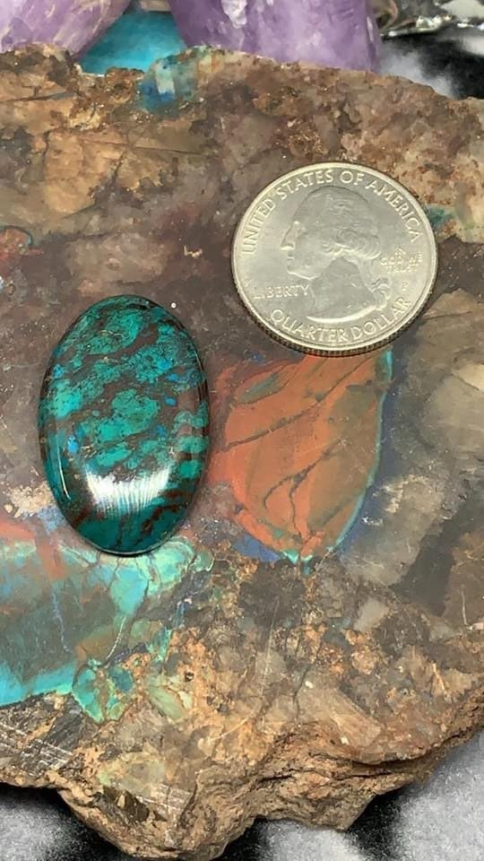 Parrot Wing Gemstone Cabochon