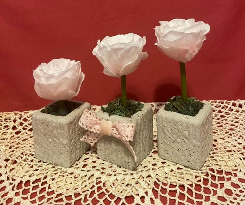 Shabby Chic Pink Roses Trio