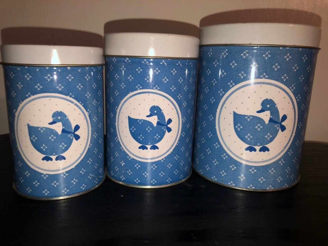 Cute rustic pattern print blue goose can
