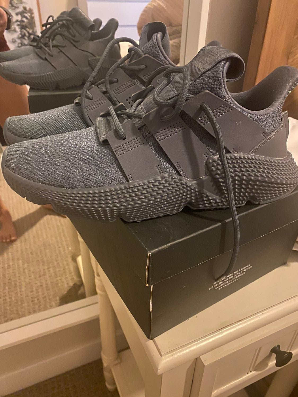 Adidas mens sneakers - prophere
