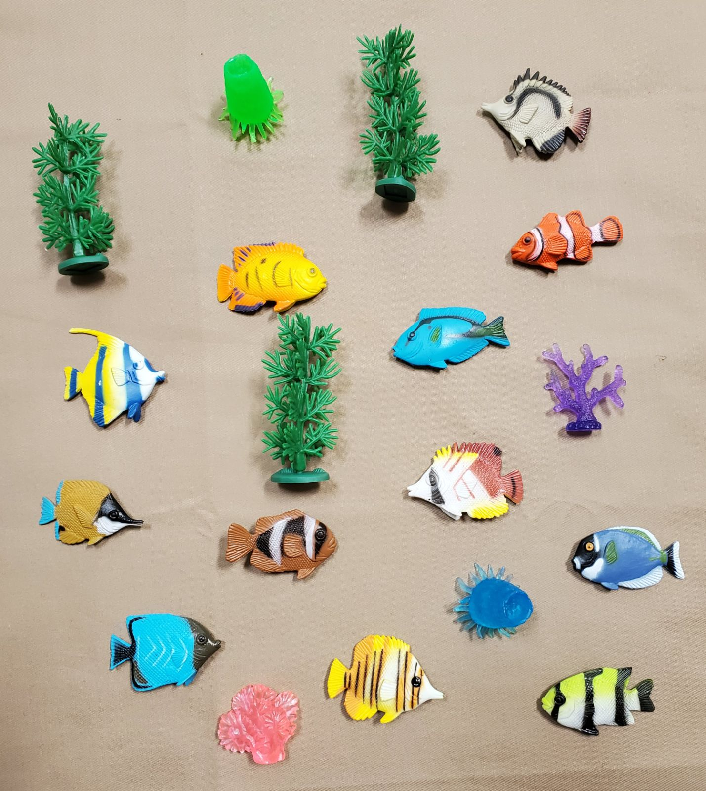 Educational toy Tropical Fish