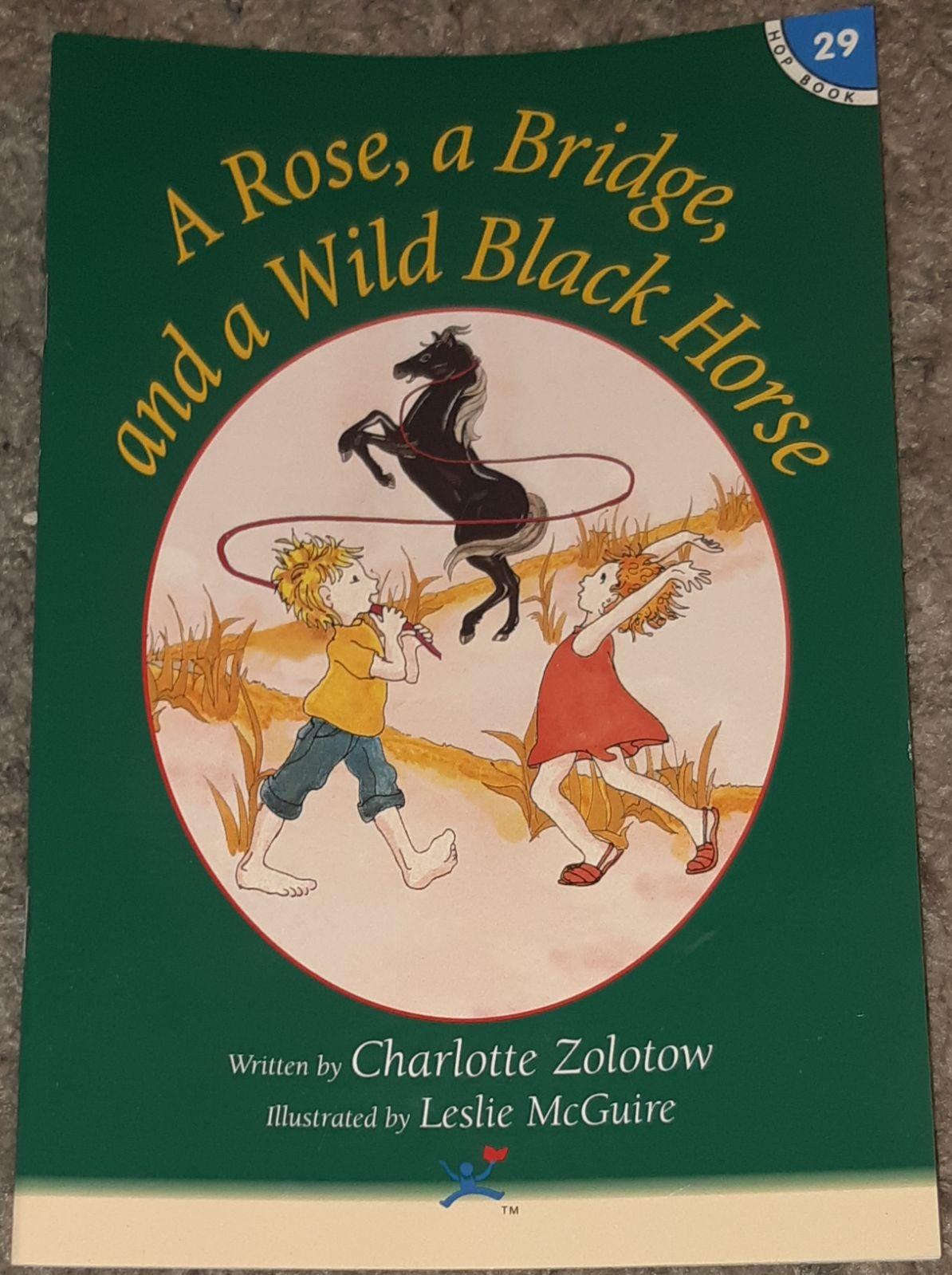 Wild Black Horse Hooked On Phonics #29
