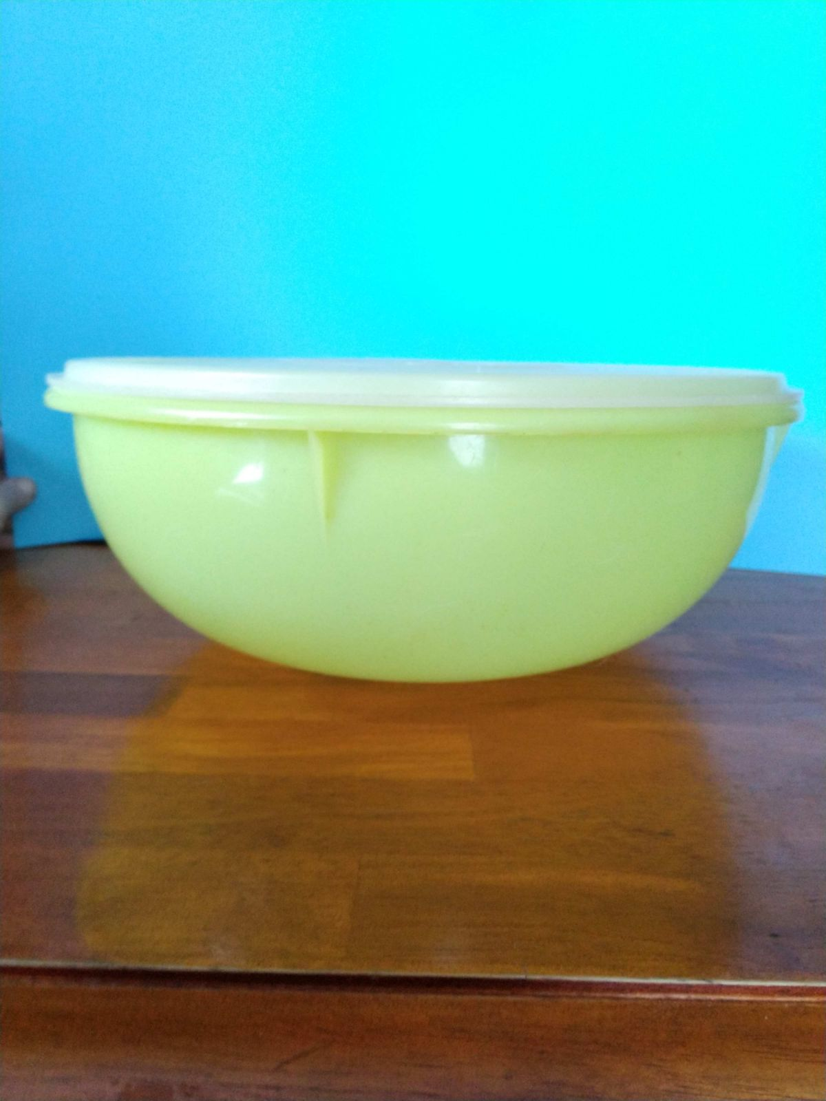 VGT Tupperware Large Bowl