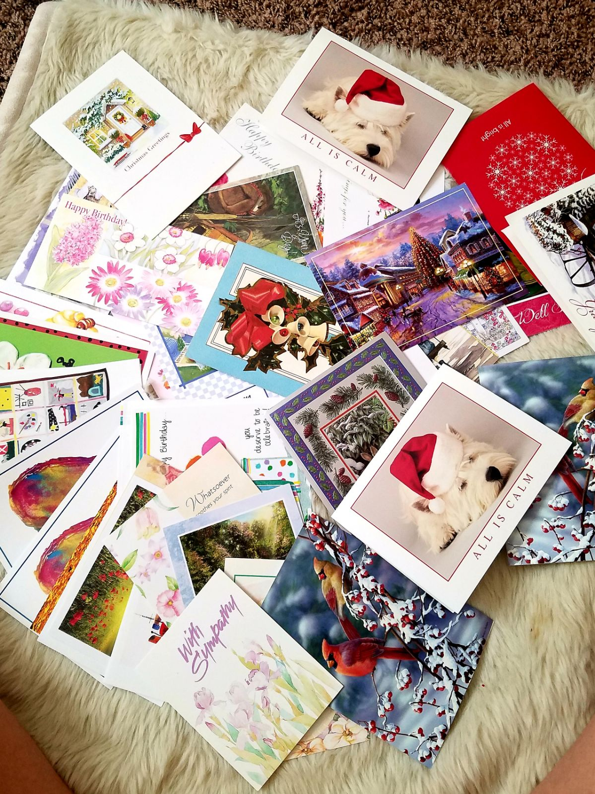 greeting cards, bulk, 40 cards
