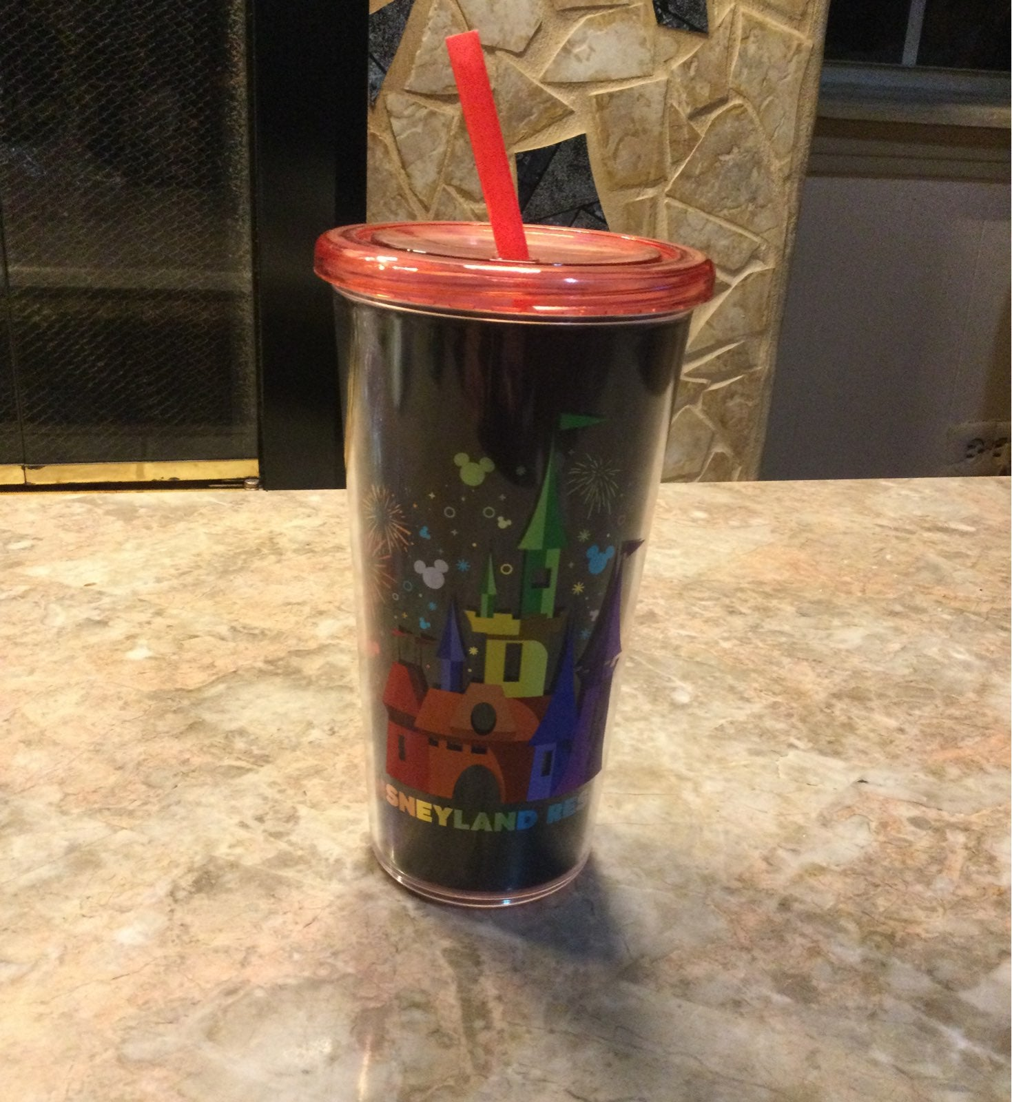 Disneyland Resort Tumbler