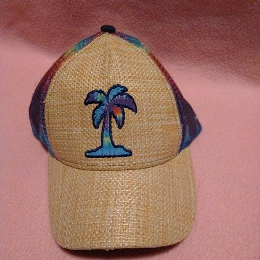 no boundaries summer palm tree rainbow