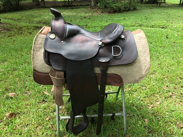 "16"" Circle Y Trainers Wide Mule Saddle"