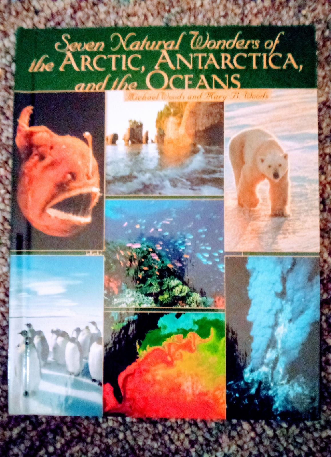 Book 7 Natural Wonders of the World.