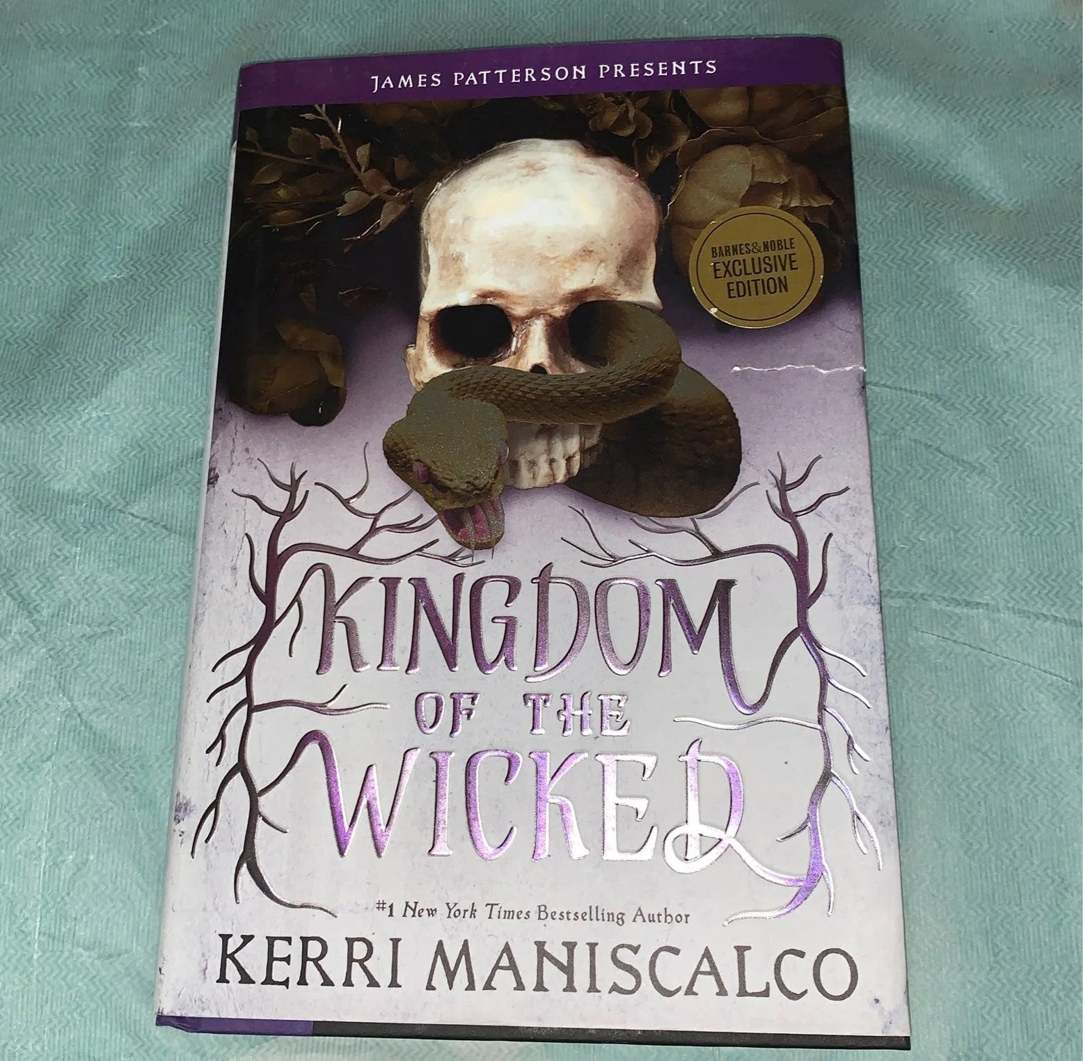 Kingdom of the wicked barnes and noble