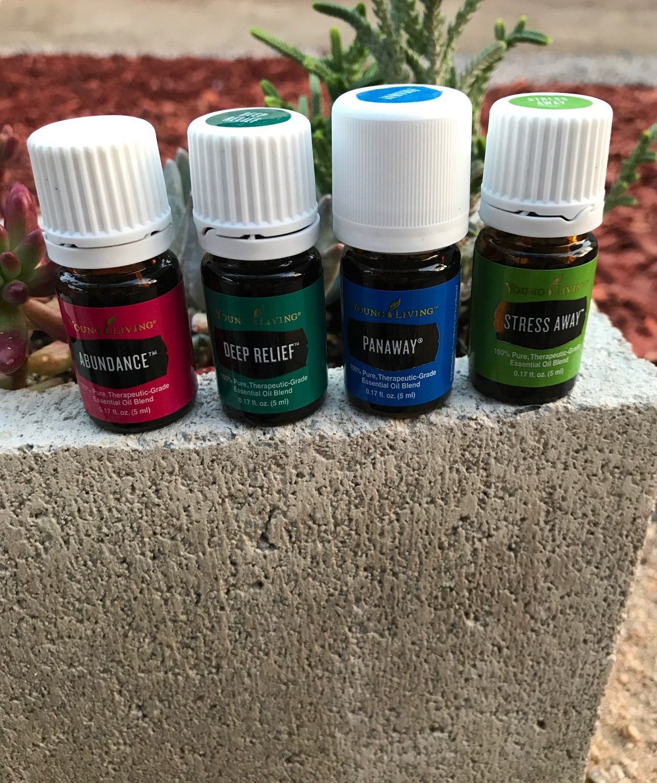 YL Essential Oils for gaylalovespink