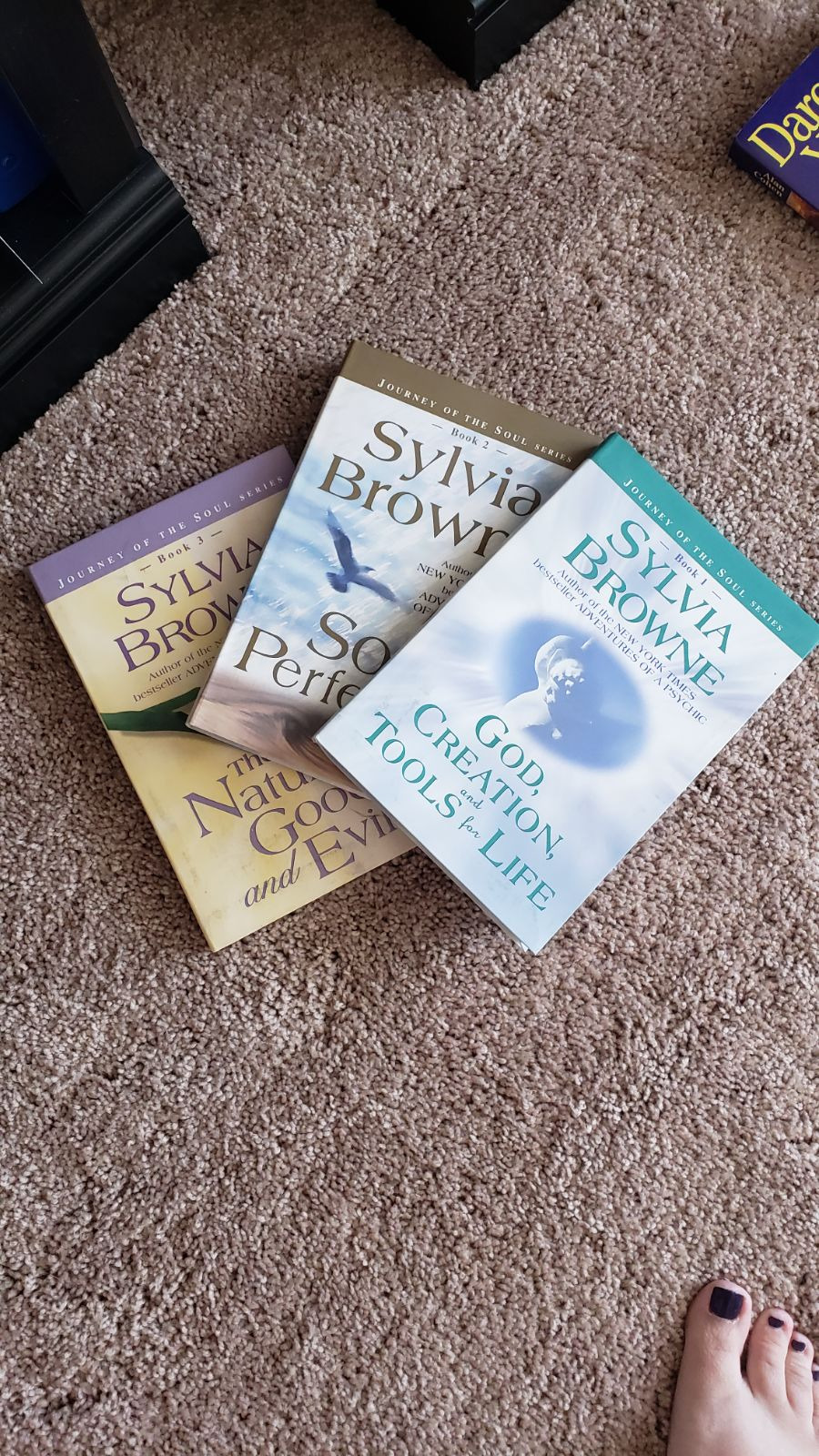 Bundle and save. Silvia brown 3 book ser