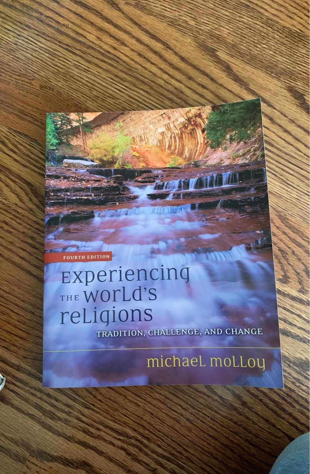 Experiencing the worlds religions by mic