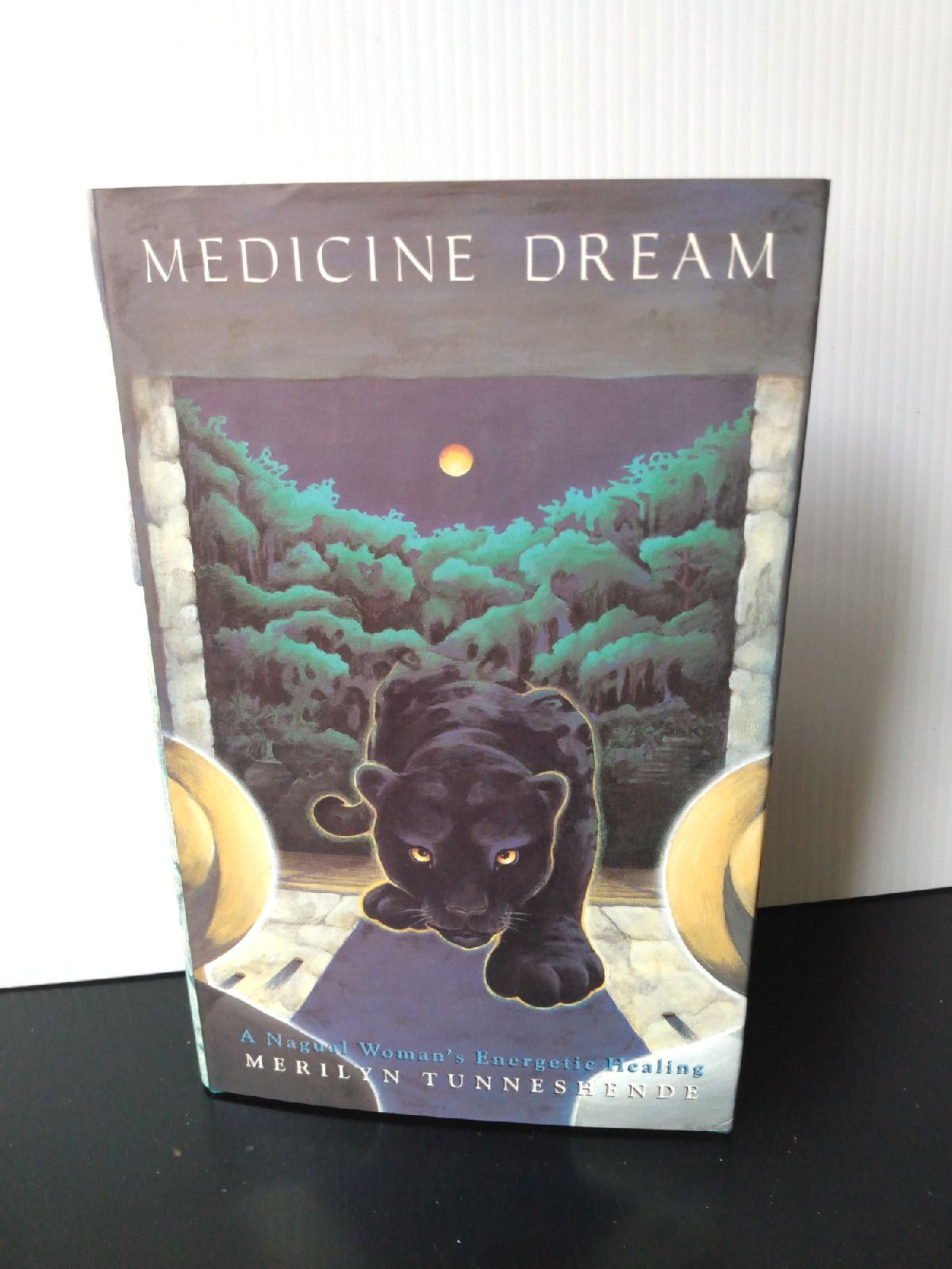 Medicine Dream a magical woman's energet