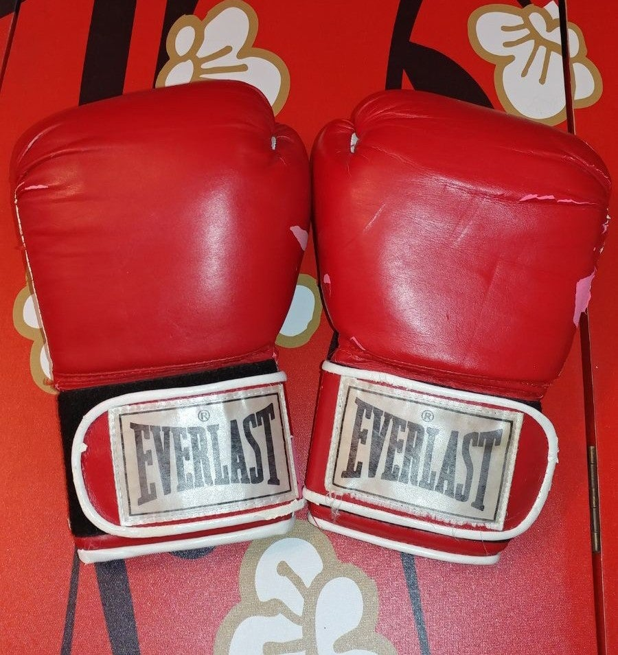 Everlast 12oz Classic Boxing Gloves