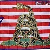 GADSDEN 1776 FLAG