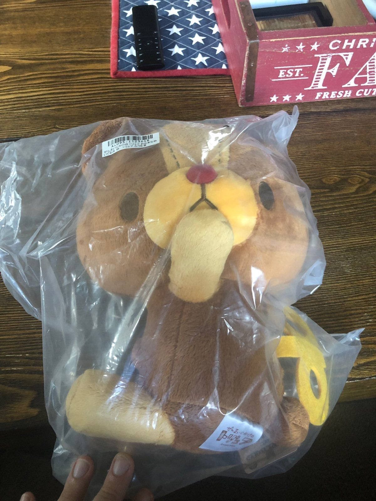 Japanese Toreba Plush Bear