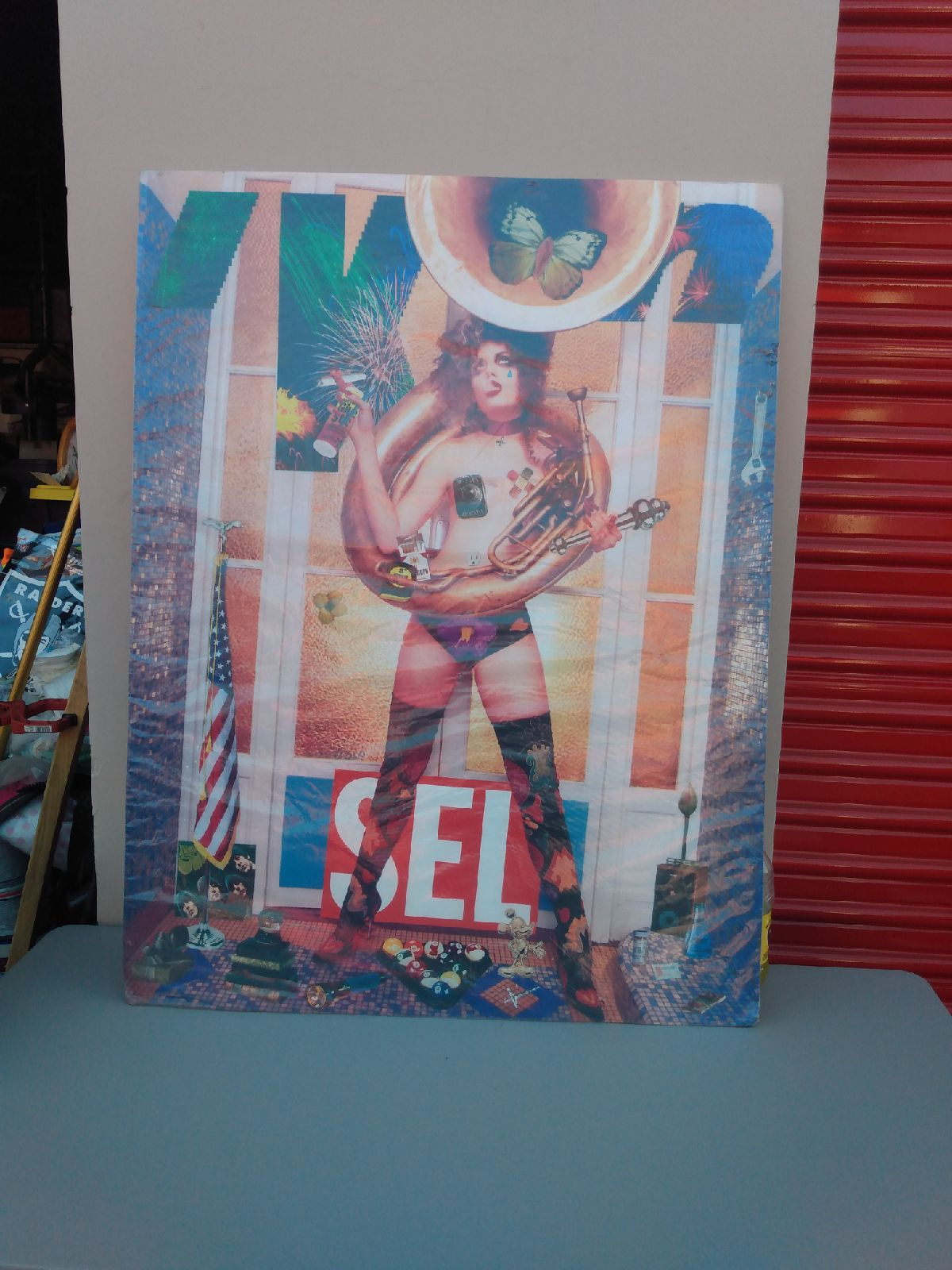 Poster SEL