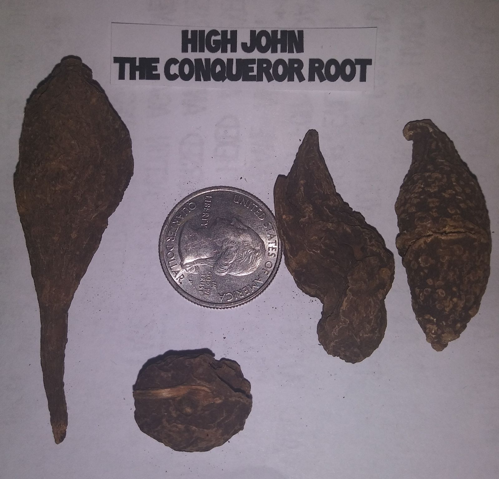 HIGH JOHN THE CONQUEROR ROOTS