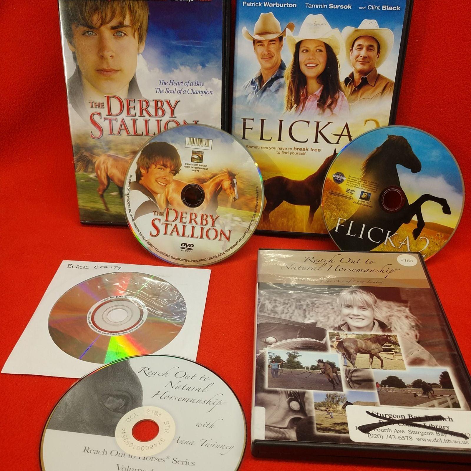 DVD HORSE LOT: DERBY STALLION FLICKA 2 B