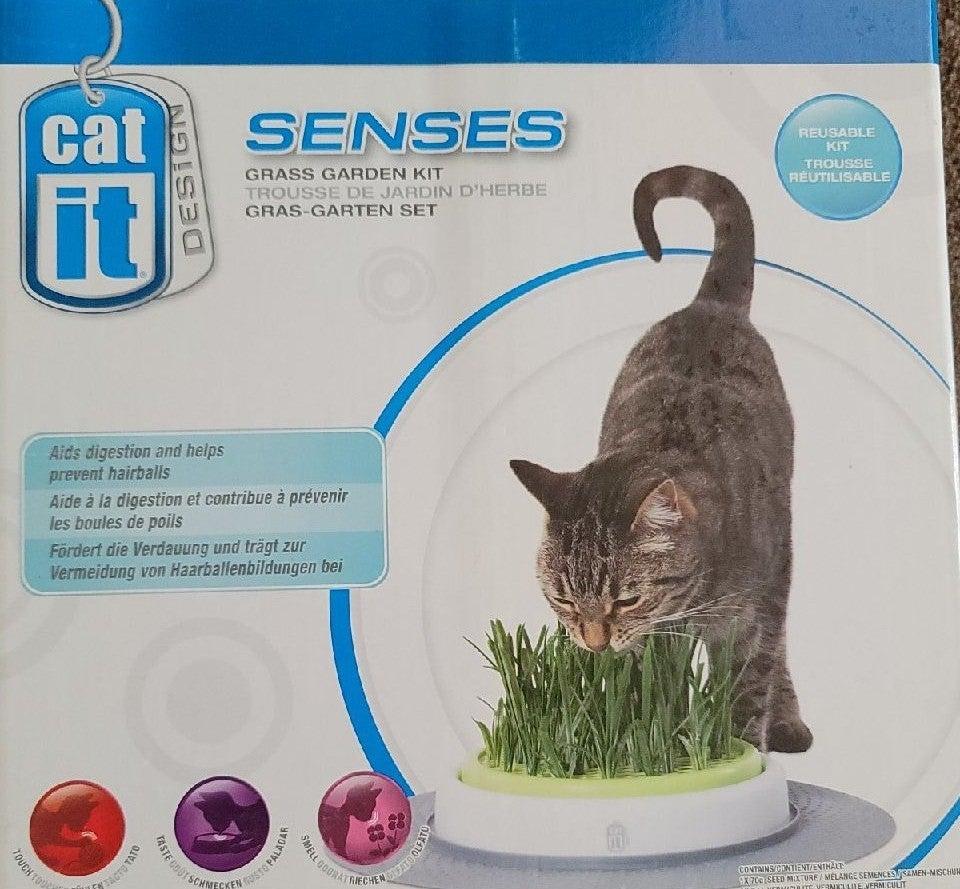 Cat It Senses grass garden kit