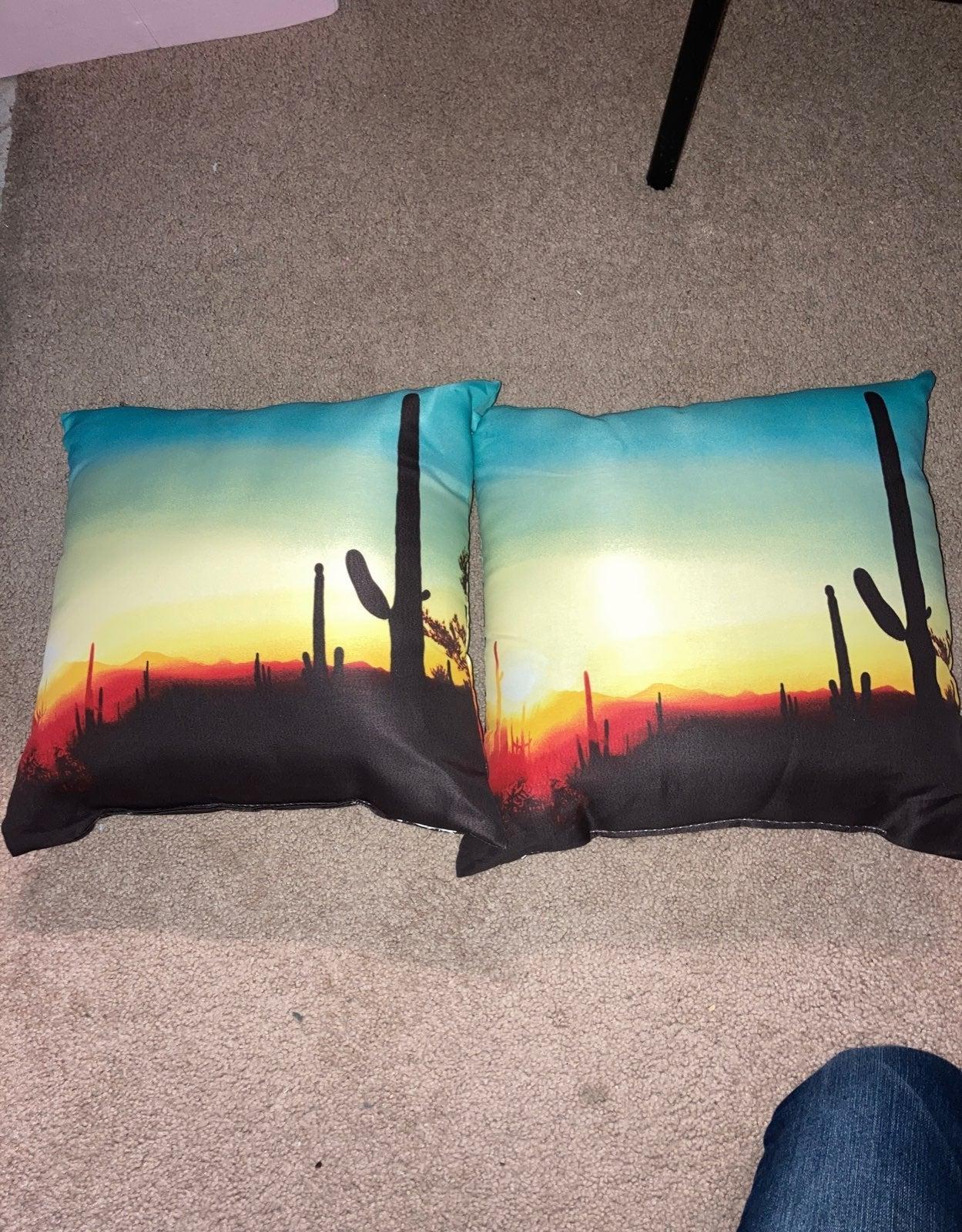 2 desert pillows