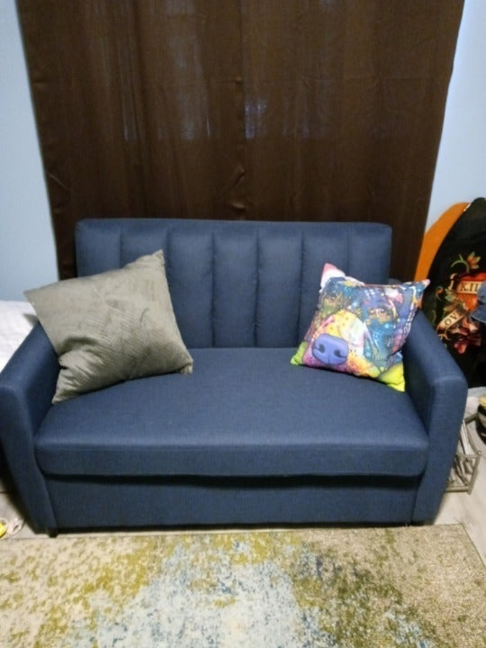 TWO TWIN SOFA BEDS COLOR IS BLUE LINEN