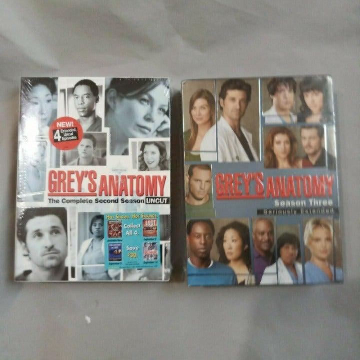 Grey's Anatomy Seasons 2 and 3