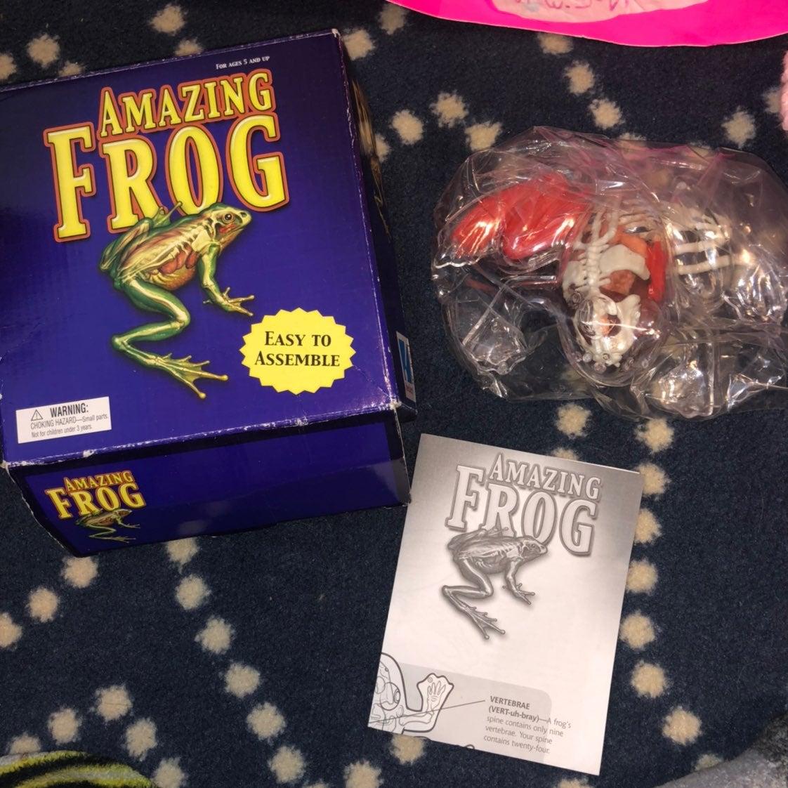 Amazing frog (fake Dissection frog)