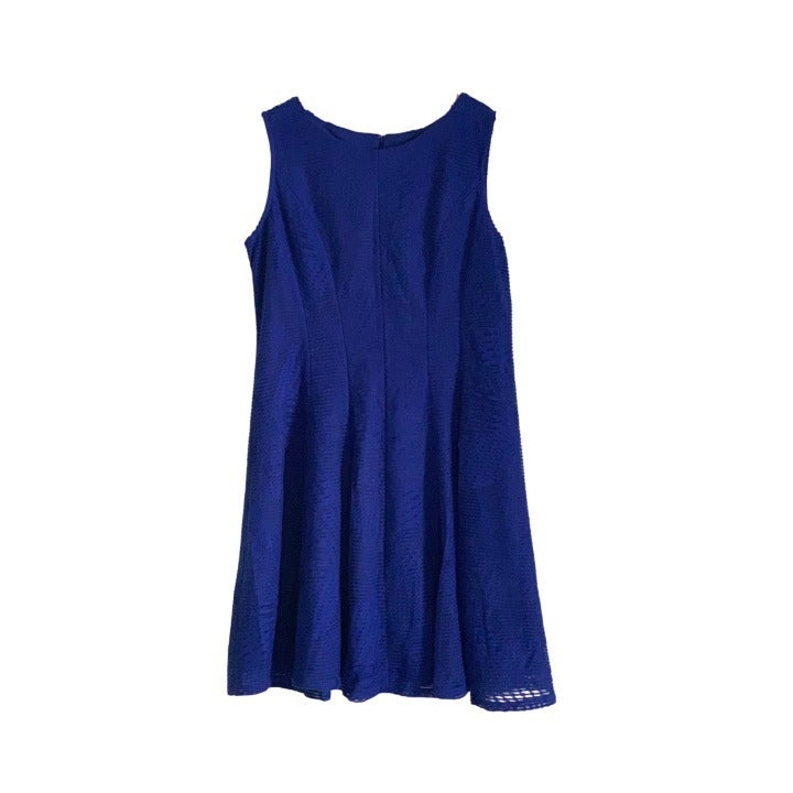 [14] Blue Lace-Type Formal Dress