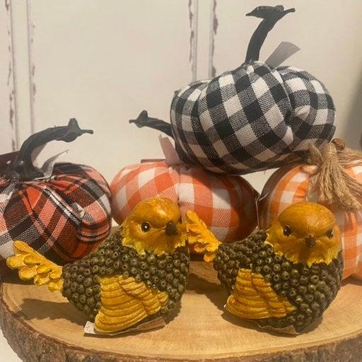 Bird and pumpkin bundle