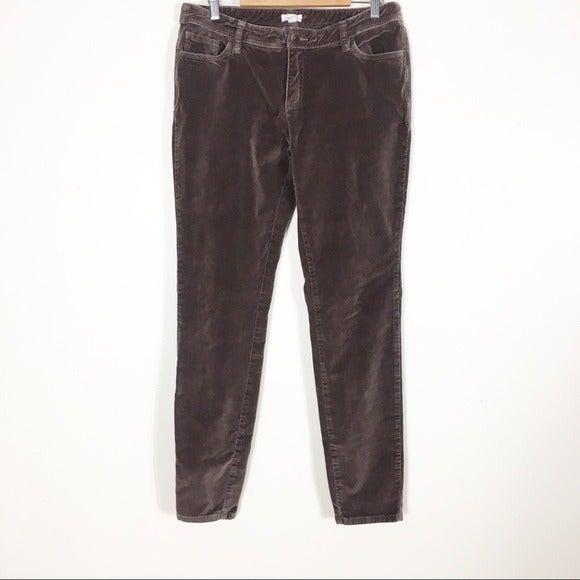 Garnet Hill Brown Velour Skinny Leg Pant