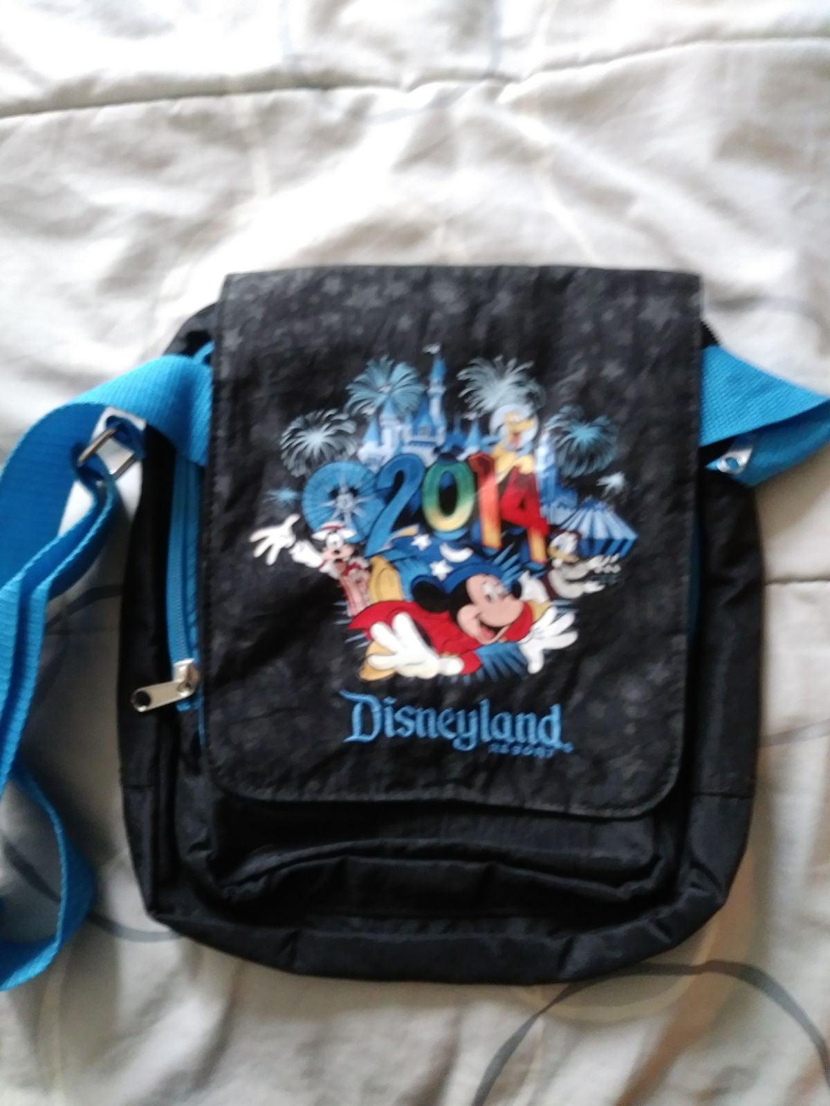 Disneyland bag