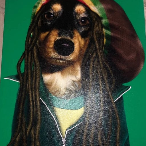 Pets rock canvas (on hold)