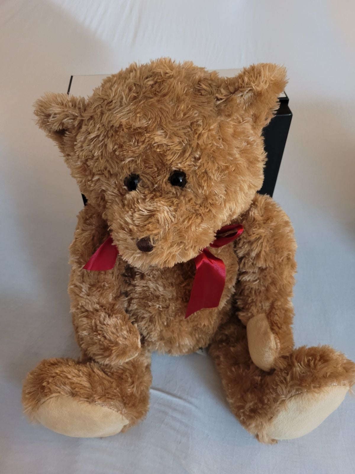 Soft and fluffy Teddy bear