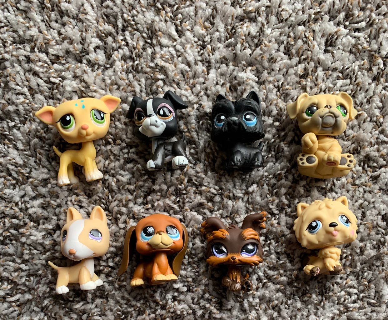 LPS dog lot