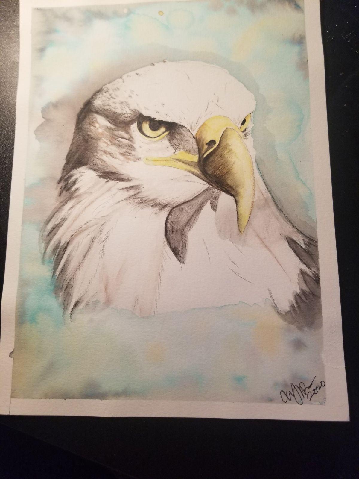Eagle Painting Prismacolor Art Tye dye