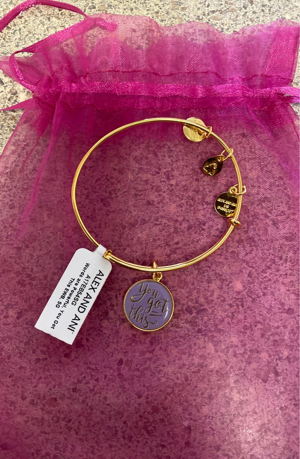 Alex and Ani Gold Bracelet You Got This