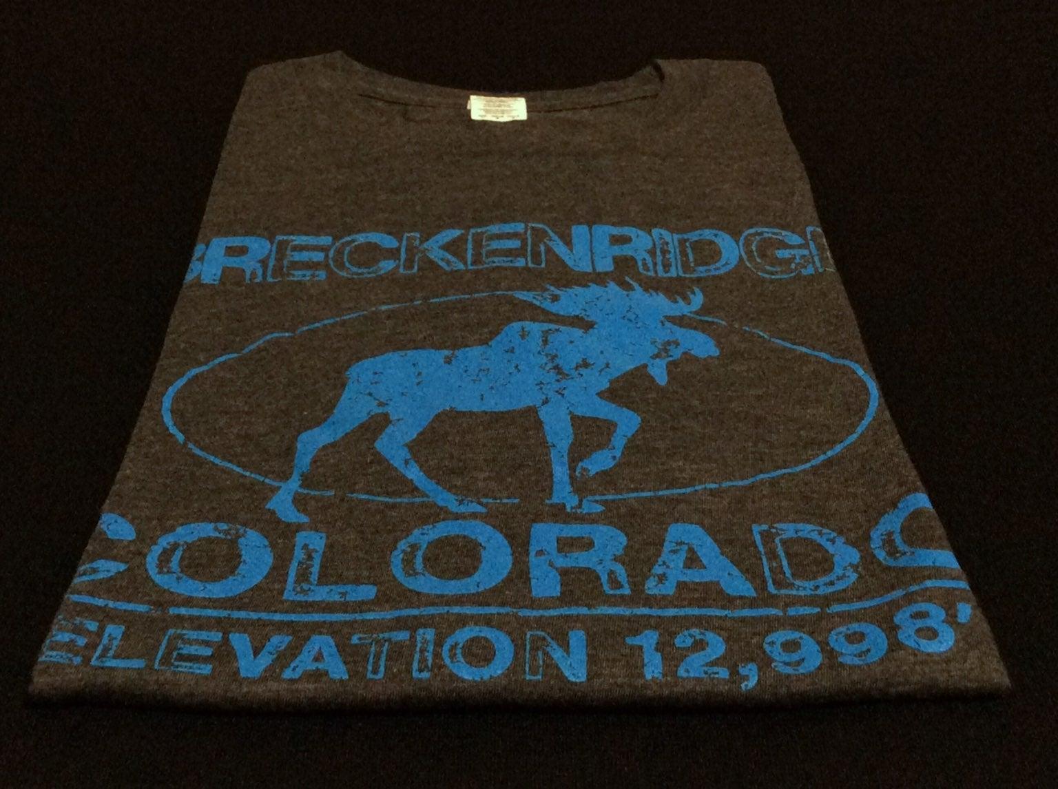 *GENTLY WORN* $20 - Breck T-Shirt : LRG