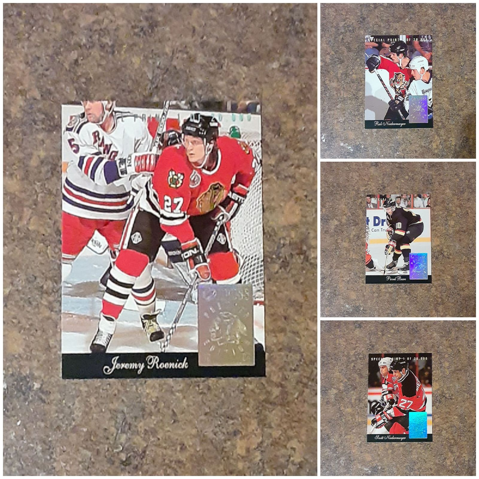 Donruss 1993 NHL Special Print Collectib