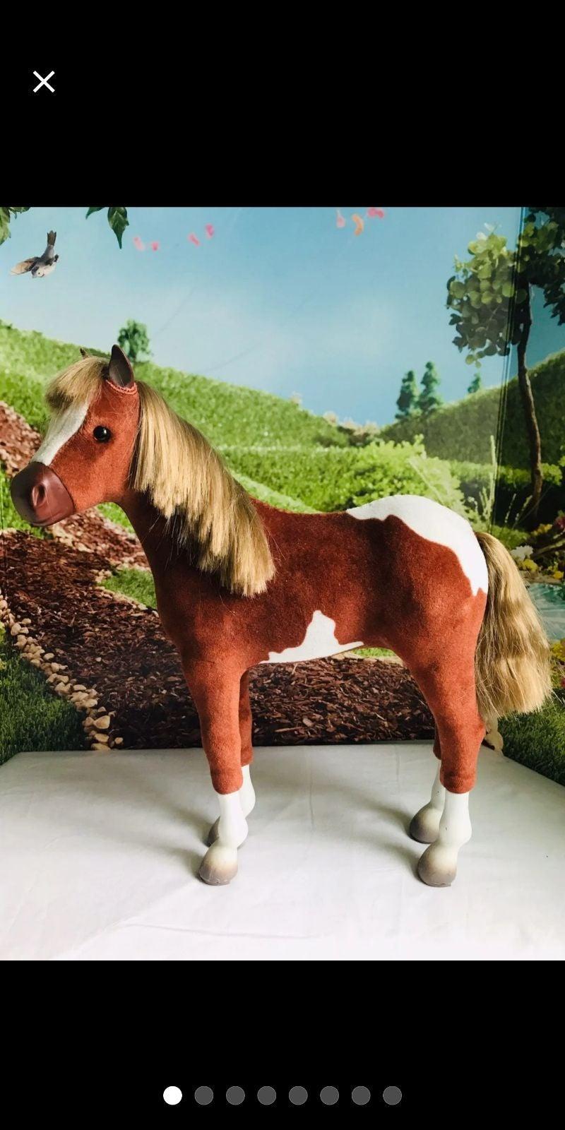 American girl foal