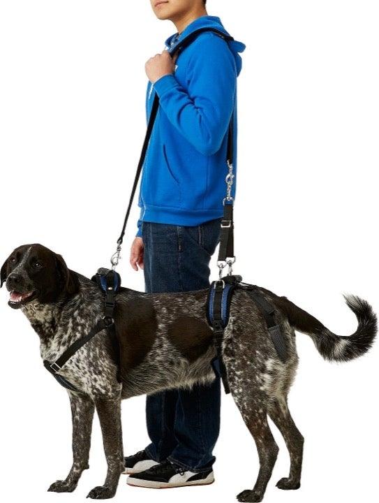 Harness Care lift