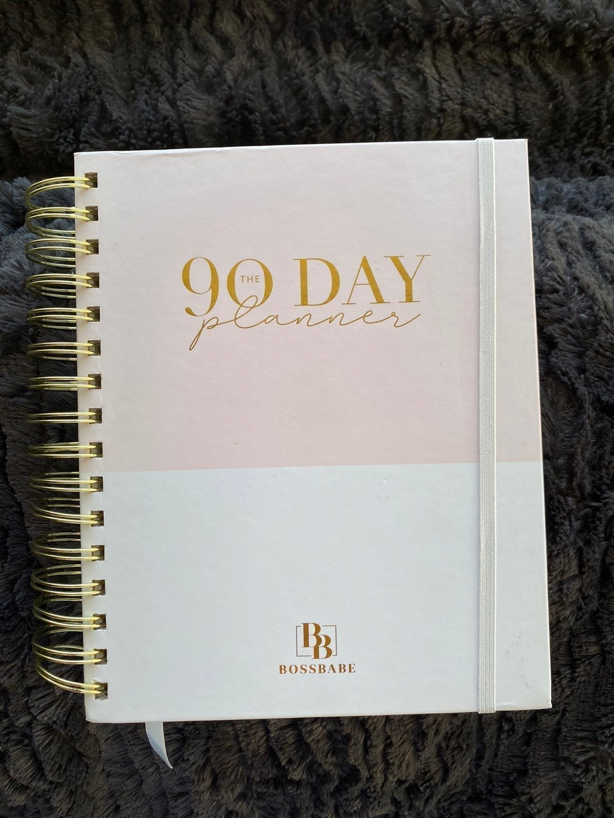 Undated Goal Setting 90 Day Planner
