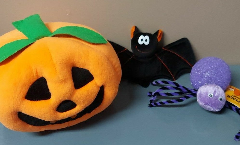 Stuffed Plush Pumpkin Halloween Lot