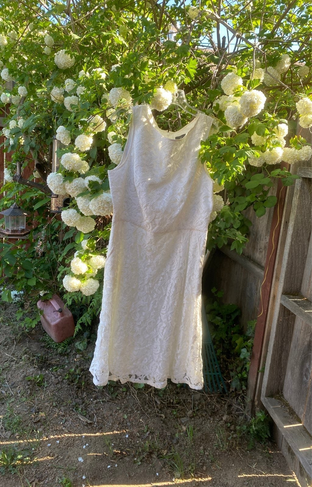 Adrianna Papell Evening White Lace Dress