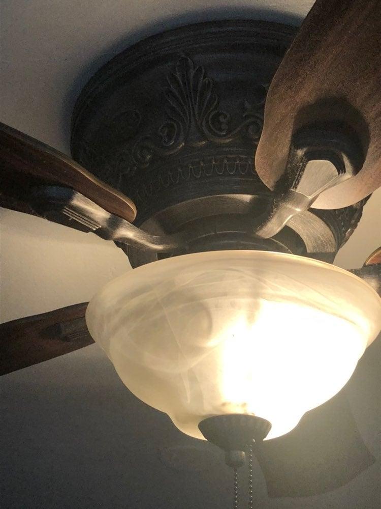 Hunter Gorgeous ceiling fan 21.5' fan b